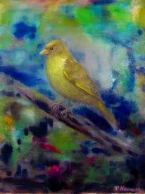Vogel, Grünfink, Dämmerung, Ölmalerei