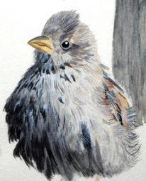 Malerei, Tiere, Vogel, Figural