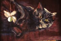 Katze, Haustier, Kater, Spielen