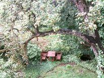 Fotografie, Romantik, Garten, Landschaft