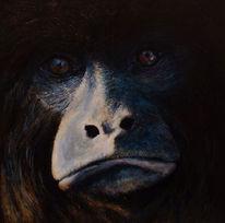 Tiere, Brüllaffe, Tierwelt, Gemälde