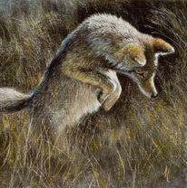 Wolf, Realismus, Wildlife realistisch, Malerei