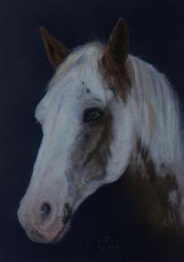 Pastellmalerei, Gemälde, Tiere, Klassisch