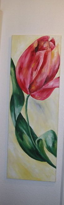 Bunt, Rot, Portrait, Blumen