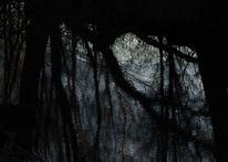Fluss, Spiegelung, Ufer, Fotografie