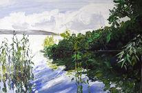 Bodensee, Grün, Idylle, Wasser