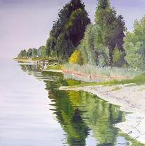 Bodensee, Uferlandschaft, Wasser, Spiegelung