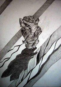Wurzel, Zeichnungen, Pflanzen