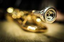 Trompete, Musik, Fokus, Fotografie