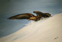 Realismus, Schnee, Raubvogel, Landschaft