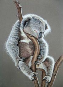 Tiere, Tierwelt, Portrait, Pastellmalerei