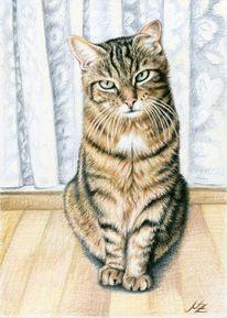 Tiere, Malerei, Katze, Fell