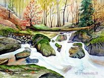Harz, Herbst, Bach, Aquarell