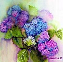 Blumen, Hortensien, Aquarell