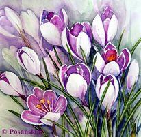 Frühling, Frühlingsblüten, Blumen, Aquarell