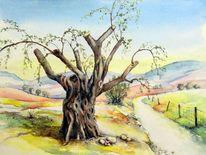 Aquarellmalerei, Landschaft, Baum, Olivenbaum