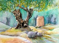 Olivenbaum, Landschaft, Aquarellmalerei, Madeira