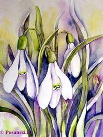 Schneeglöckchen, Blumen, Aquarell