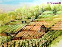 Wein, Weinberg, Tal, Main