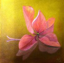 Hortensien, Blüte, Pflanzen, Blütenblätter