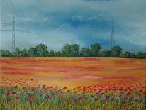 Landwirtschaft, Landschaft, Blüte, Weite