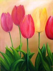 Garten, Blumen, Blüte, Frühling