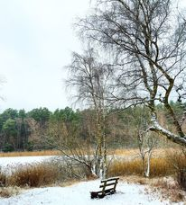 Landschaft, Minimalistisch, Winter, Reise