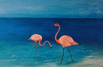 Blau, Pink, Flamingo, Orange