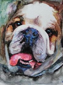 Aquarellmalerei, Hund, Portrait, Tiere