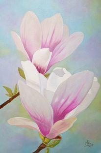 Zwei magnolienblüten, Magnolien, Blüte, Malerei