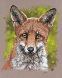 Pastellmalerei, Augen, Fuchs, Fell