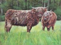 Rind, Kuh, Pastellmalerei, Zeichnungen