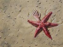 Seestern, Strand, Hand, Naturestrikesback