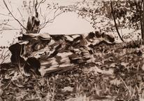 Zeichnung, Natur, Schwarz, Zeichnungen