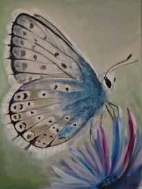 Tiermalerei, Schmetterling, Malerei, Licht und schatten