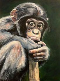 Schimpanse, Affe, Handarbeit, Tiere