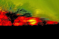 Busch, Morgen, Autofenster, Himmel