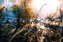 Feld, Fluss, Schatten, Sonne