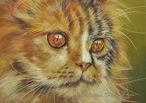Pastellmalerei, Perser, Malerei, Katze