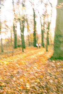 Herbst, Wald, Hain, Unscharf