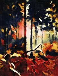 Wald, Licht, Herbst, Landschaft