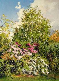 Baum, Frühling, Park, Marzahn