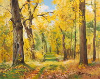 Baum, Blätter, Herbst, Wald