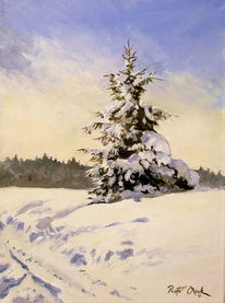 Schnee, Wald, Landschaft, Winter