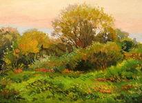 Wiese, Baum, Gras, Sommer