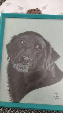 Schwarz, Zeichnung, Gemälde, Mischlingshund