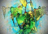 Bildbearbeitung, Natur, Künstlerische bearbeitung, Duftende farben