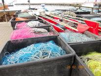 Eis, Fisch, Ostsee, Wismarbucht