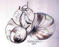 Schnecke, Liebe, Illustrationen