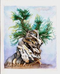 Olive alt, Baum, Knorrig, Aquarell